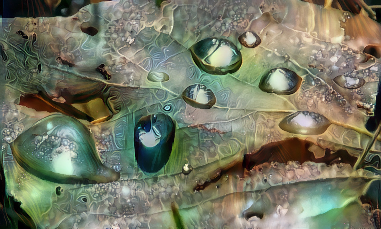 dropletsonaleaf